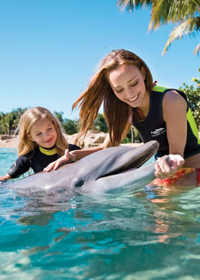 Discovery Cove chauffeur services