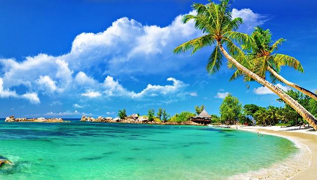 Palm beach  chauffeur services